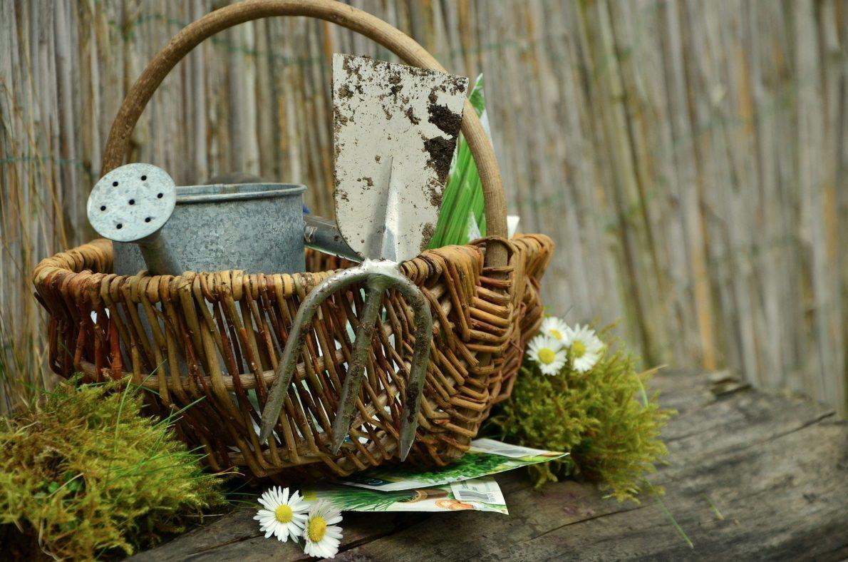 garden-1290908_1920